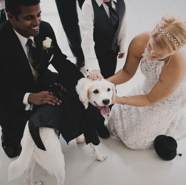 """Pups are welcome at any wedding I shoot!"" -- <i>Anda Marie</i>"