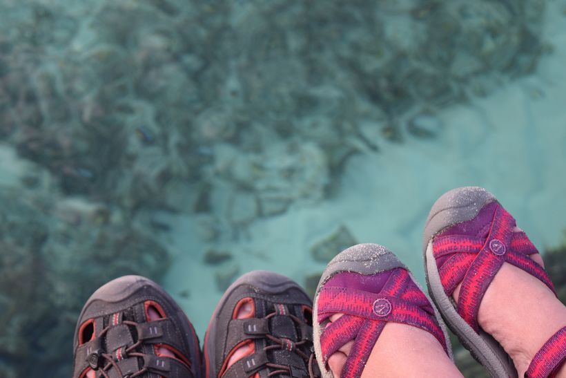 What six feet of Bahamian water looks like from six feet up