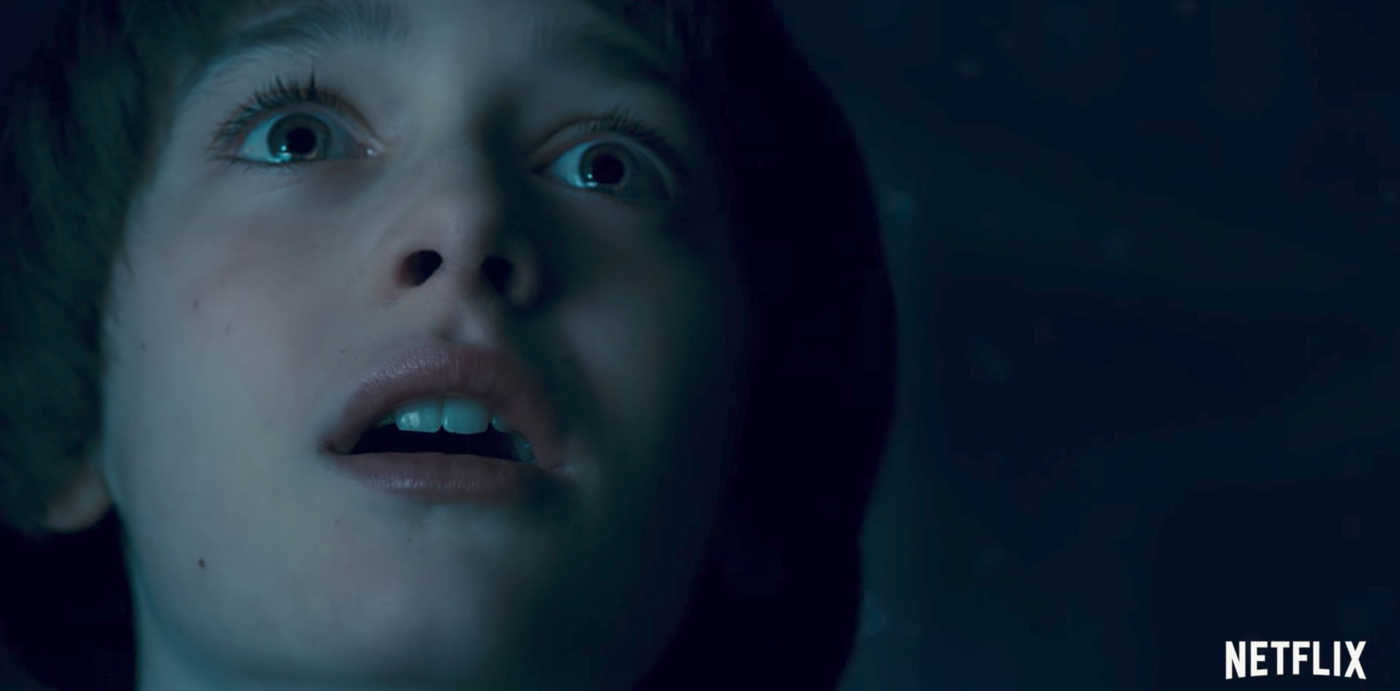 'Stranger Things' Trailer May Support Totally Upside Down