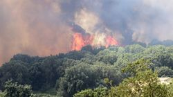 French Wildfires See 10,000 Holidaymakers Evacuated From