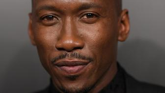NEW YORK, NY - JANUARY 04:  Presenter and Awardee Mahershala Ali attends the 2016 National Board of Review Gala at Cipriani 42nd Street on January 4, 2017 in New York City.  (Photo by Dimitrios Kambouris/WireImage)