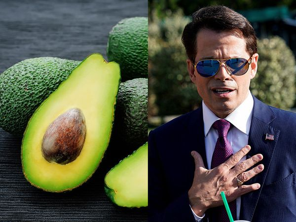 """<a href=""""http://www.huffingtonpost.com/topic/anthony-scaramucci"""">Anthony Scaramucci</a>, ahem """"The Mooch,"""" just can't compete"""