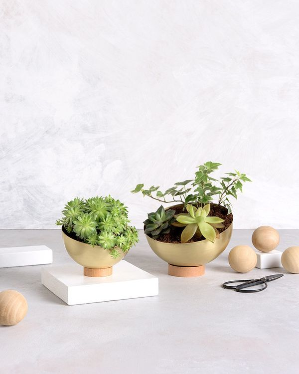 """This modern planter is made from a sheet of brass manipulated into a half sphere shape. It rests on a wooden base that the s"