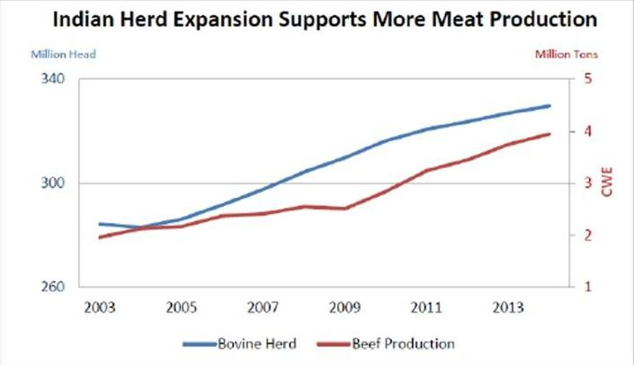 Beef production in India took off after 2009, after moderate growth in the preceding period.