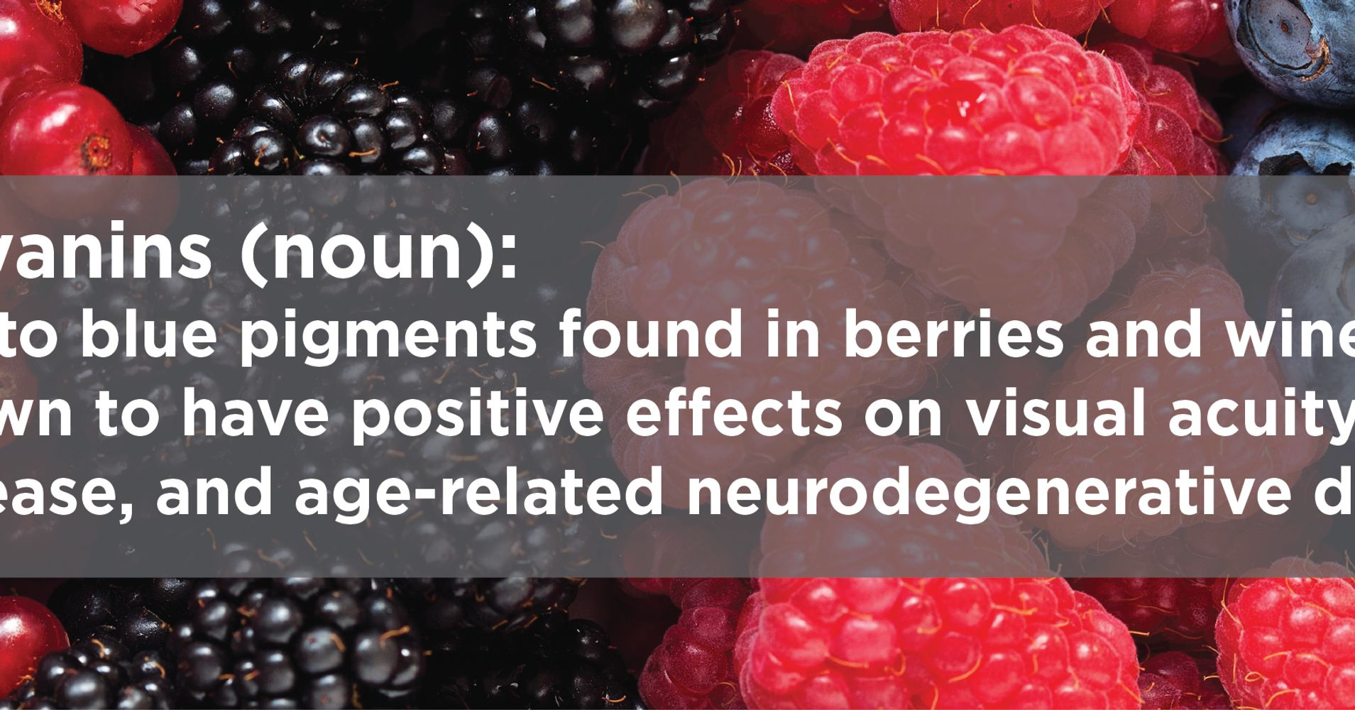 Tufts' Nutrition Experts Answer Your Questions On The Benefits Of Berries   HuffPost Life