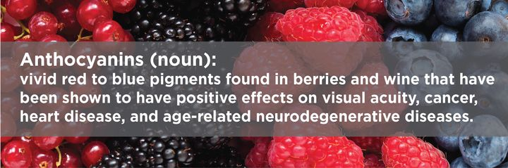 """<p><a rel=""""nofollow"""" href=""""http://www.nutritionletter.tufts.edu/glossary/a.html"""" target=""""_blank"""">Anthocyanins</a> are pigments belonging to the flavonoid group of phytochemicals that give blue, purple, and red colors to berries and other fruits, vegetables, and flowers. </p>"""