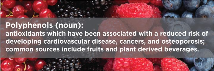 Polyphenols are the most abundant antioxidant in our diets.