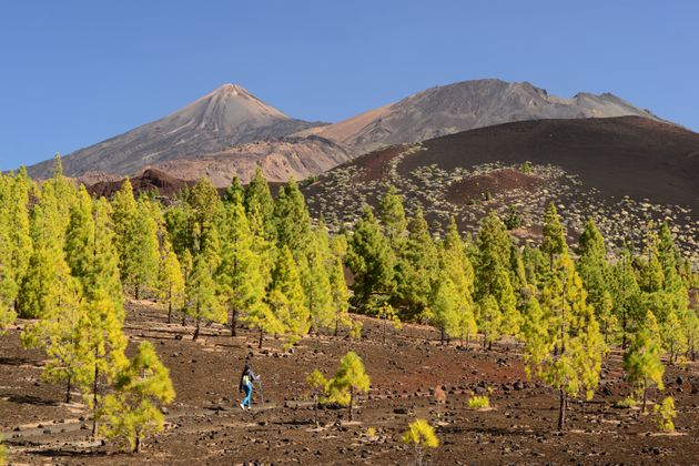Teide National