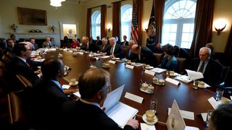 U.S. President Donald Trump (5th R) holds a meeting with his cabinet at the White House in Washington, U.S. March 13, 2017. REUTERS/Jonathan Ernst