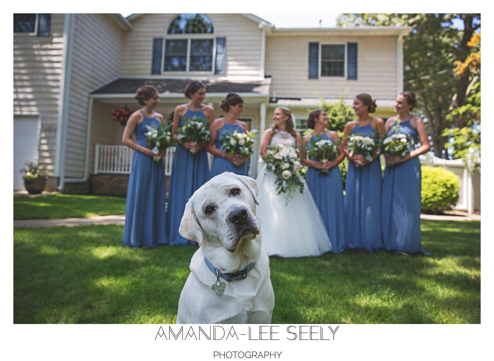 """Cooper stole the show at Jen and Eric's wedding in Babylon, New York."" -- <i>Amanda-Lee Seely</i>"