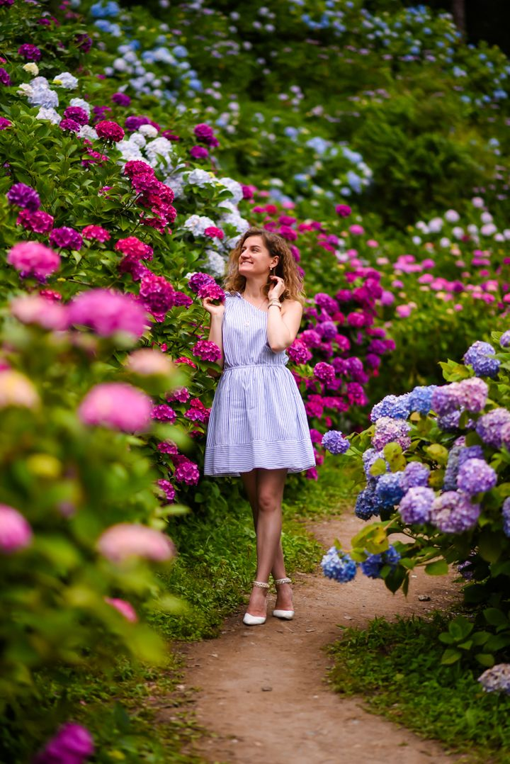"Hydrangea garden in <a rel=""nofollow"" href=""https://travelwithnanob.com/2017/06/28/magical-hydrangea-garden-in-chiba/"" target"