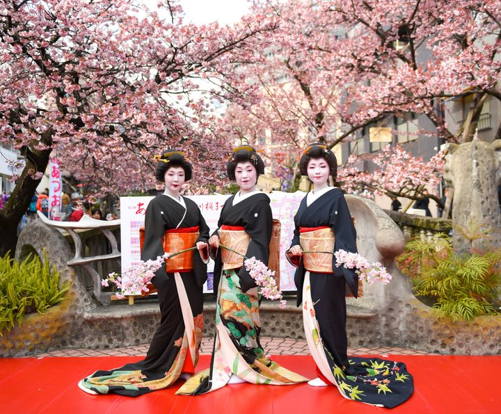 "Sakura Festival in <a rel=""nofollow"" href=""https://travelwithnanob.com/2017/02/12/7-reasons-i-fell-in-love-with-atami/"" targe"