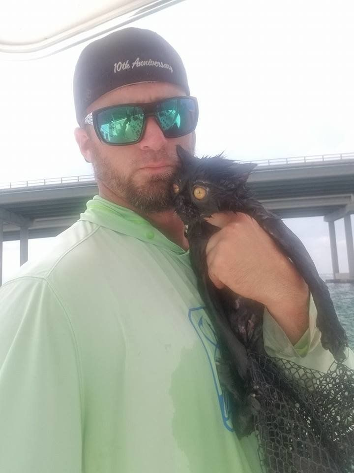 Boat Captain Rescues Cat Apparently Thrown Off