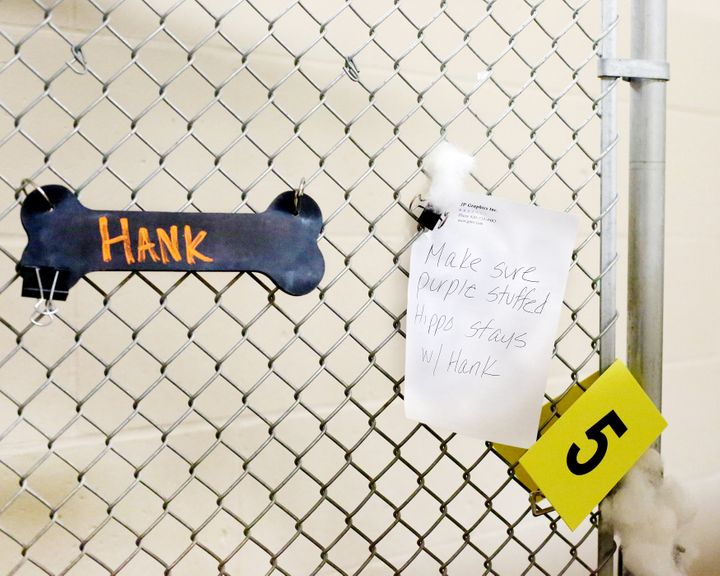 """""""Make sure purple stuffed hippo stays w/ Hank"""" a sign on the couple's enclosureread."""