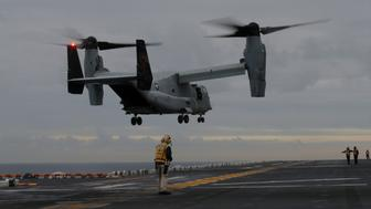 A U.S. Marines MV-22 Osprey Aircraft lands on the deck of the USS Bonhomme Richard amphibious assault ship off the coast of Sydney, Australia June 29, 2017. Picture taken June 29, 2017. REUTERS/Jason Reed