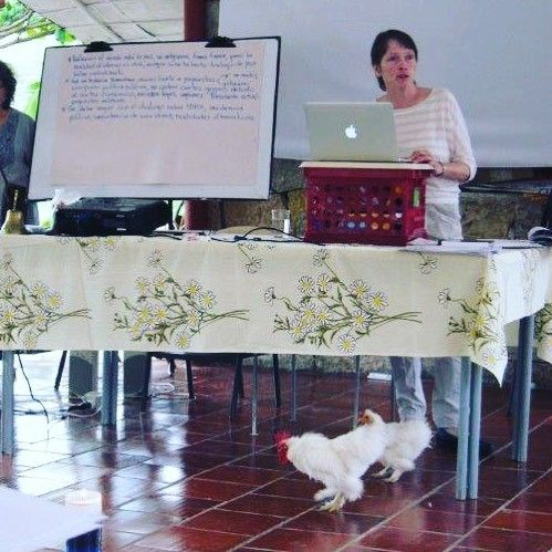 Ginny, in Colombia, working with communities, ignores the chickens pecking at her feet