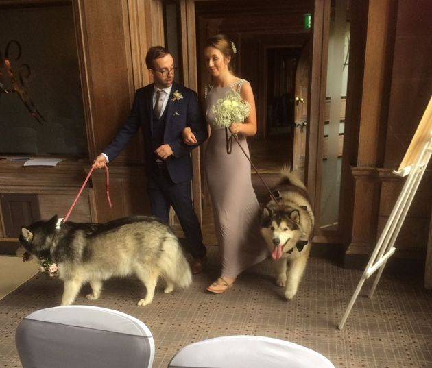 A bridesmaid and groomsman walked the dogs into the