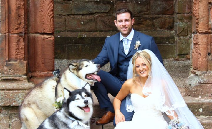 "Emma-Leigh and Shane Matthews included their canine maid of honor and best man in ""every part"" of their wedding day."