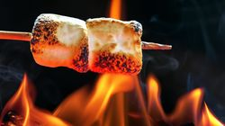 Marshmallows Are Actually Plants, But Not In The Way You're