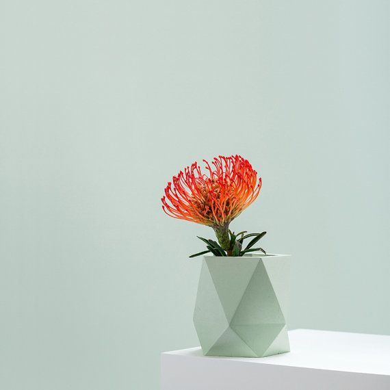 """Vases, just like planters, allow you to add color in multiple ways – from the vessel, to the flowers themselves."