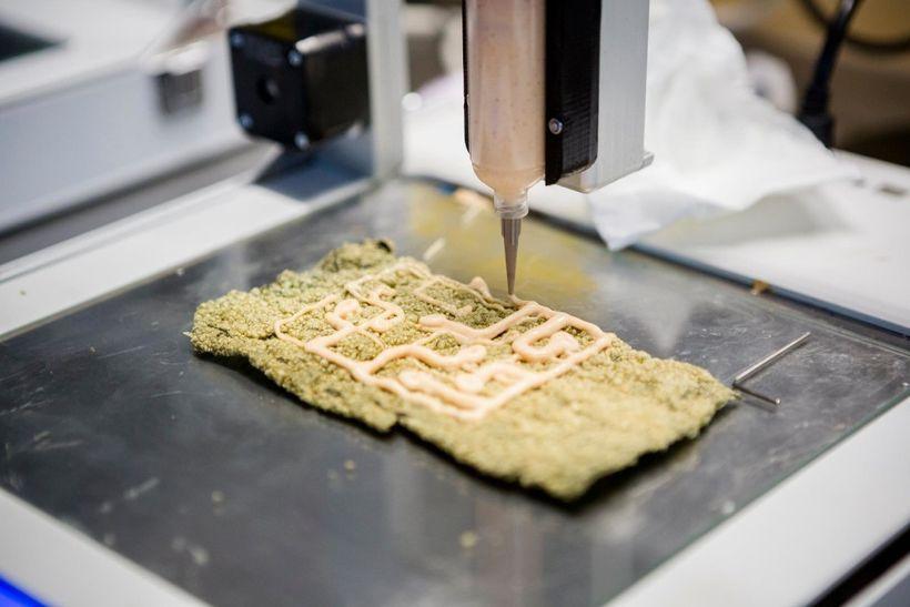 3D Printing Fish & Chips