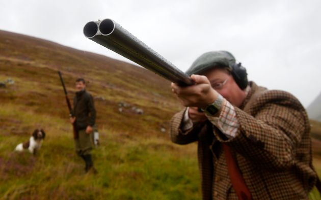 The start of the grouse shooting season begins on Saturday, known as the Glorious