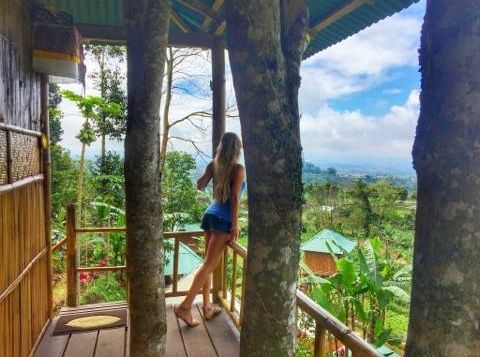<p>Just a treehouse AirBnB in the middle of the Bali jungle...nbd.</p>