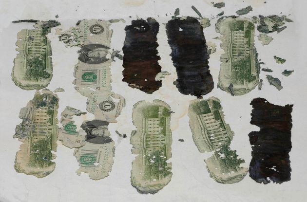 Some of the stolen $20 bills taken by a hijacker calling himself DB Cooper found in Oregon, by a young...