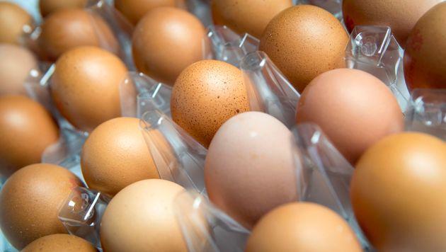 The 'toxic' egg scandal engulfing European poultry farms has