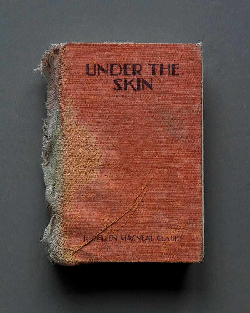 Under The Skin, 2017