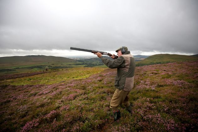 Celebrity chef Nick Nairn joins a shooting party on the Glorious Twelfth, for the start of the grouse...