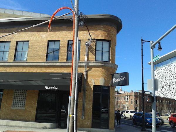 The Paradise Bar 180 Machusetts Ave Cambridge Ma