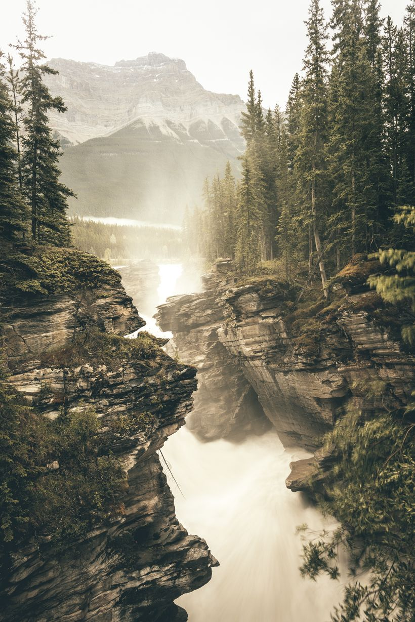 Athabasca Falls - the gift that keeps on giving.