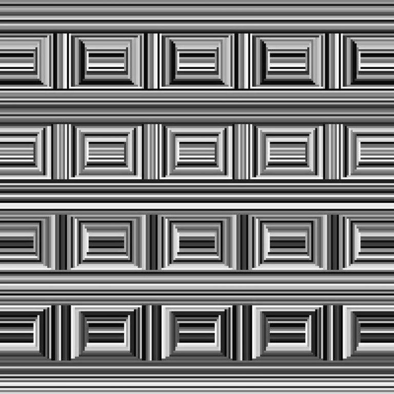 How Many Circles Can You See In This Optical