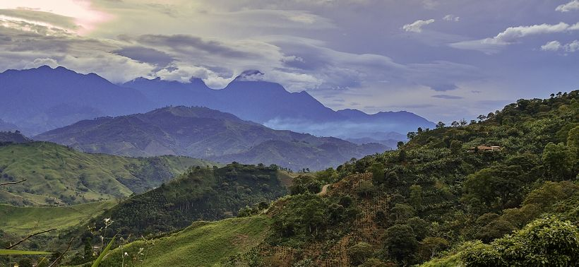 The jungles of Colombia | © Pedro Szekely/Flickr