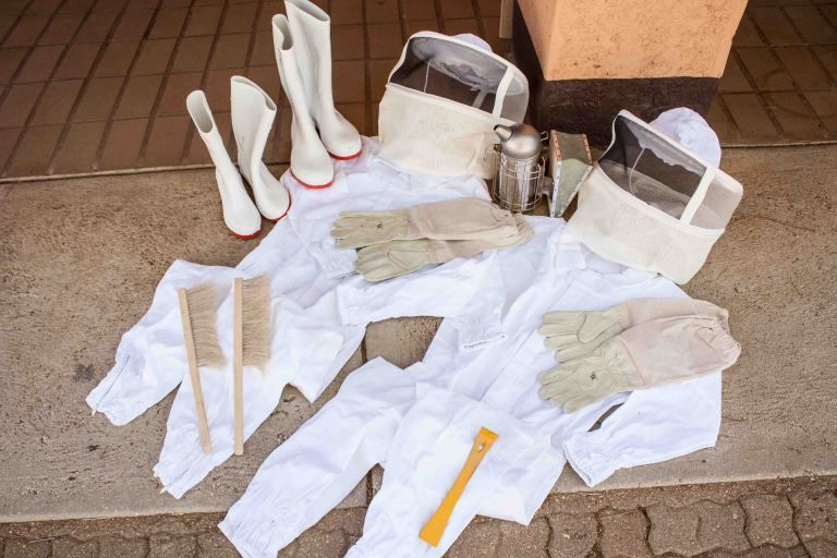 <em>Beekeeping protective gear and tools.</em>