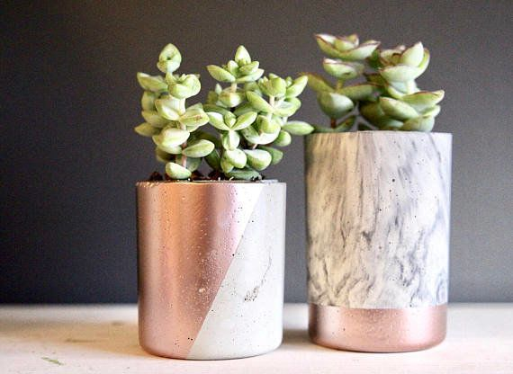 "Satisfy a virgo's love for nature with these cute succulent planters. <a href=""https://www.etsy.com/listing/5234928"