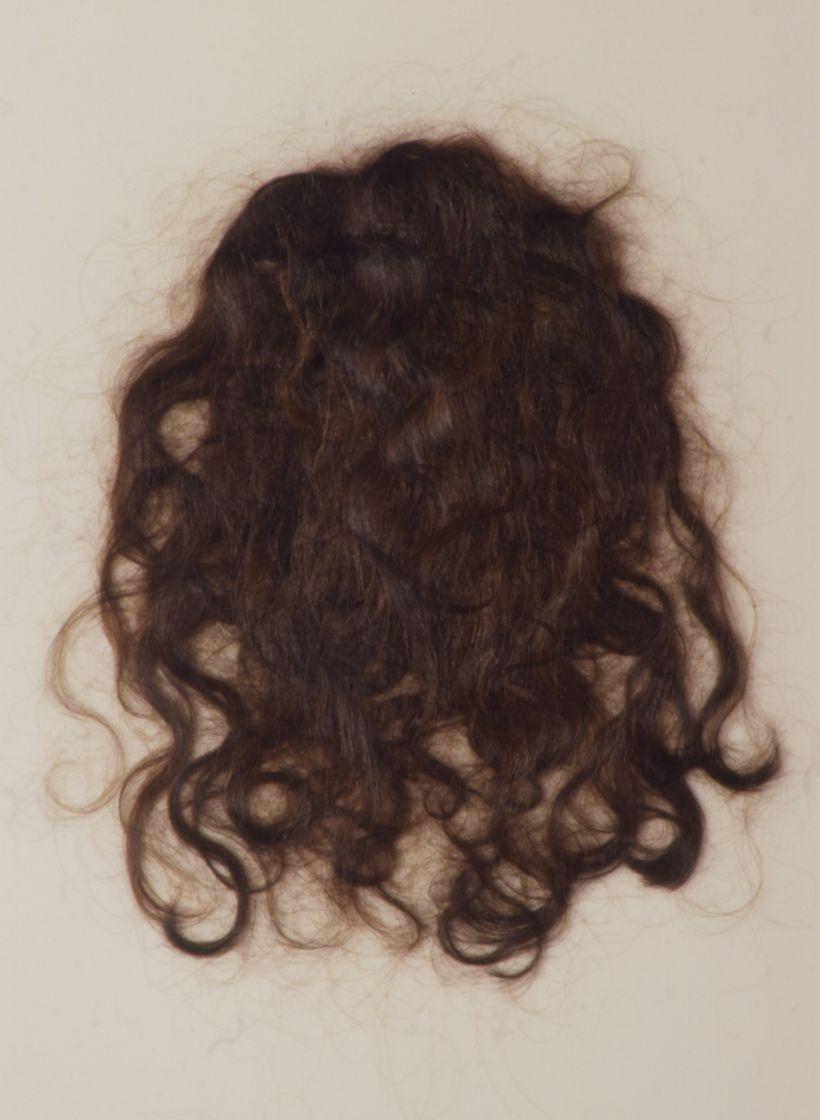 Sally Curcio, <em>Portrait</em> (1996), hair on vellum, 25 x 21 inches