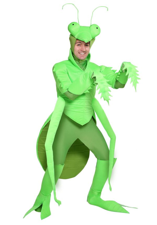 "Dressing up as a <a href=""https://www.halloweencostumes.com/adult-praying-mantis.html"" target=""_blank"">praying mantis</a> is"