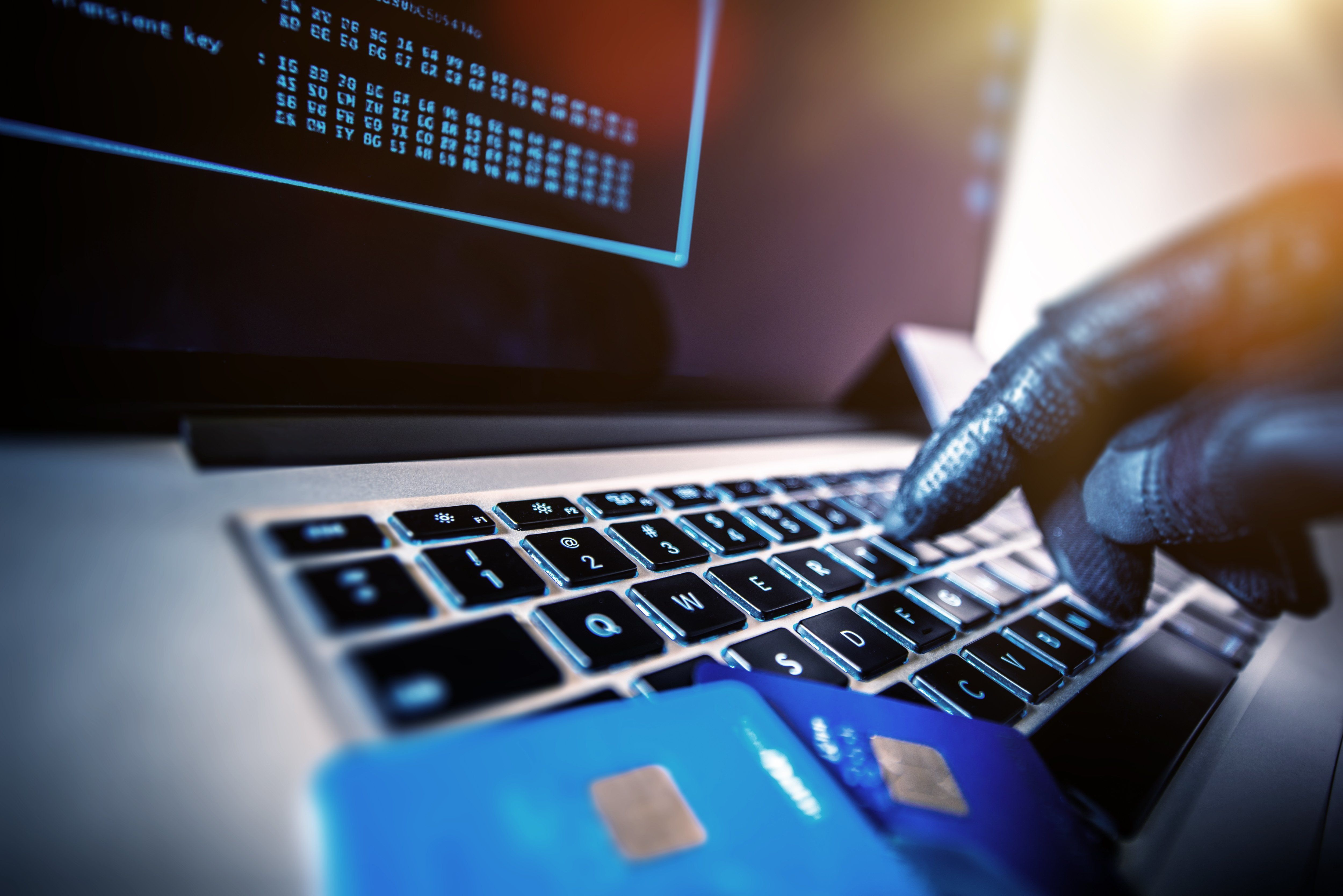 Identity Theft Reaches 'Epidemic' Levels As Online Fraud