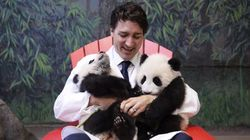 Justin Trudeau's Panda Cuddle Recreated In Butter Will Melt Your Heart (If It Doesn't Melt