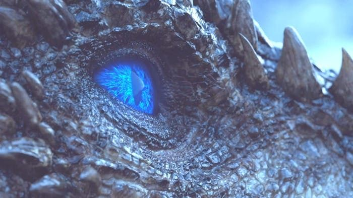 When they were zooming on the dragon's eye, was anyone surprised it opened up all blue?