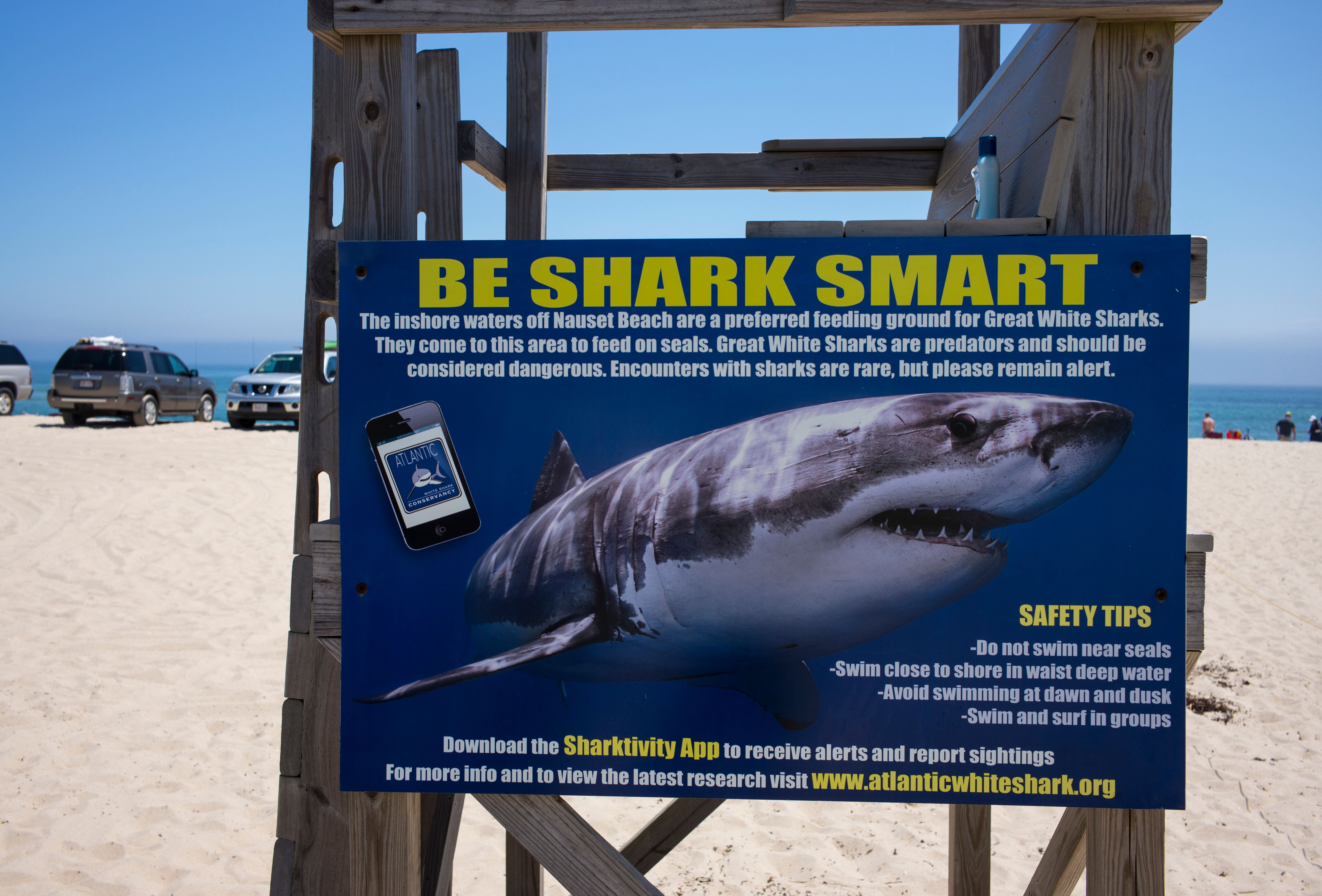 A sign warning of sharks is fastened to a guard stand in East Orleans, on Cape Cod, Massachusetts, on...