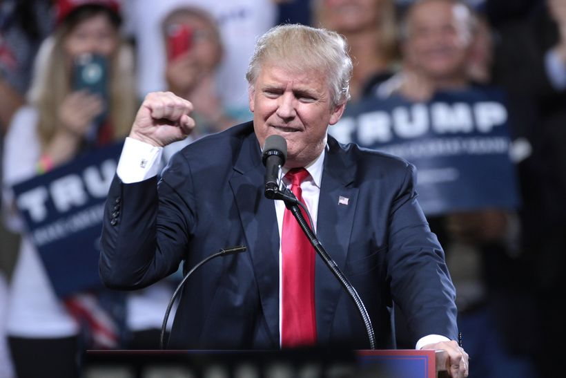 """Donald Trump with fist raised (<a rel=""""nofollow"""" href=""""https://commons.wikimedia.org/wiki/File:Donald_Trump_(27728687216).jpg"""