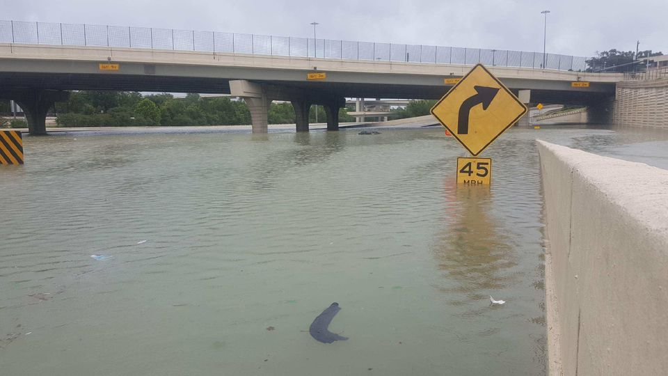 A partially submerged highway sign in