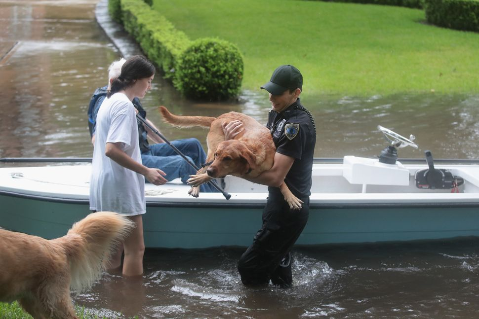 Volunteers and officers from the neighborhood security patrol help to rescue residents and their dogs in River Oaks on Sunday
