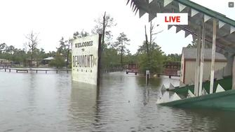 An alligator sanctuary in southeast Texas says their flooded park risks its gators escape