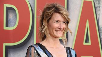 LOS ANGELES, CA - MAY 19:  Actress Laura Dern attends the premiere of 'Twin Peaks' at Ace Hotel on May 19, 2017 in Los Angeles, California.  (Photo by Jason LaVeris/FilmMagic)