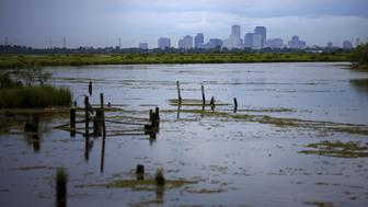 """A marsh wetland is seen near the city of New Orleans, Louisiana, United States August 18, 2015. In 2005, Hurricane Katrina triggered floods that inundated New Orleans and killed more than 1,500 people as storm waters overwhelmed levees and broke through floodwalls. Congress authorized spending more than $14 billion to beef up the city's flood protection after Katrina and built a series of new barriers that include manmade islands and new wetlands. Reuters photographer Carlos Barria returned to New Orleans after documenting events in 2005 and found a city much rebuilt and renovated, although abandoned homes show Katrina's lingering impact. REUTERS/Carlos BarriaPICTURE 8 OF 28 FOR WIDER IMAGE STORY """"HURRICANE KATRINA 10 YEARS ON""""SEARCH """"CARLOS HURRICANE"""" FOR ALL IMAGES"""