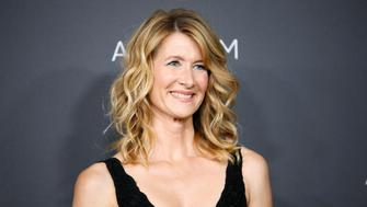 Actor Laura Dern poses at the Los Angeles County Museum of Art (LACMA) Art+Film Gala in Los Angeles, October 29, 2016. REUTERS/Danny Moloshok